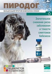 вакцинация от пироплазмоза