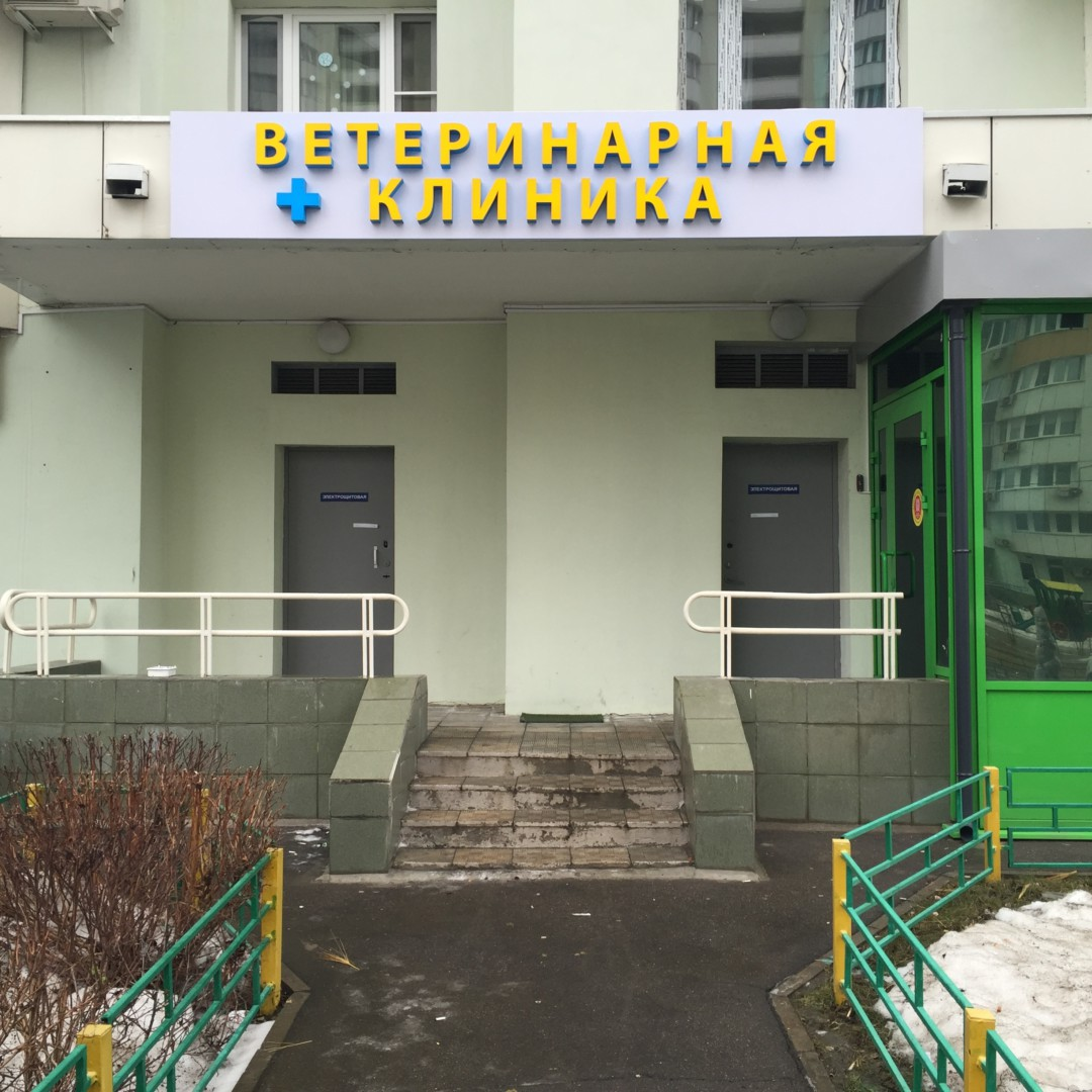 11-я городская больница г.москва