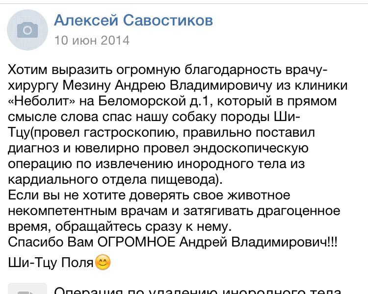 отзыв Мезину Андрею Владимировичу