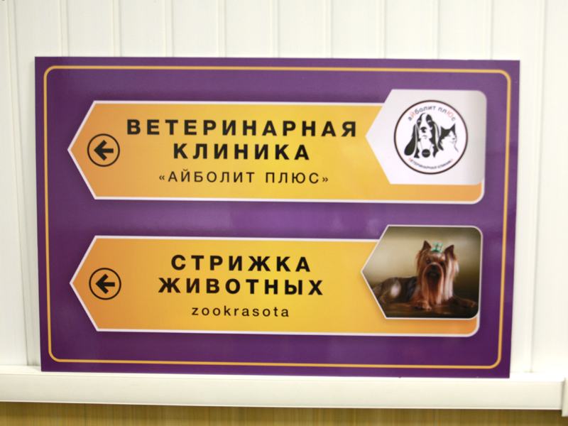 Сайт областной офтальмологической больницы архангельск