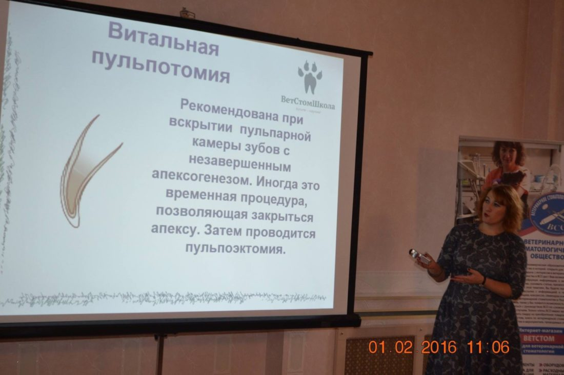 Савина Юлия Дмитриевна преподает