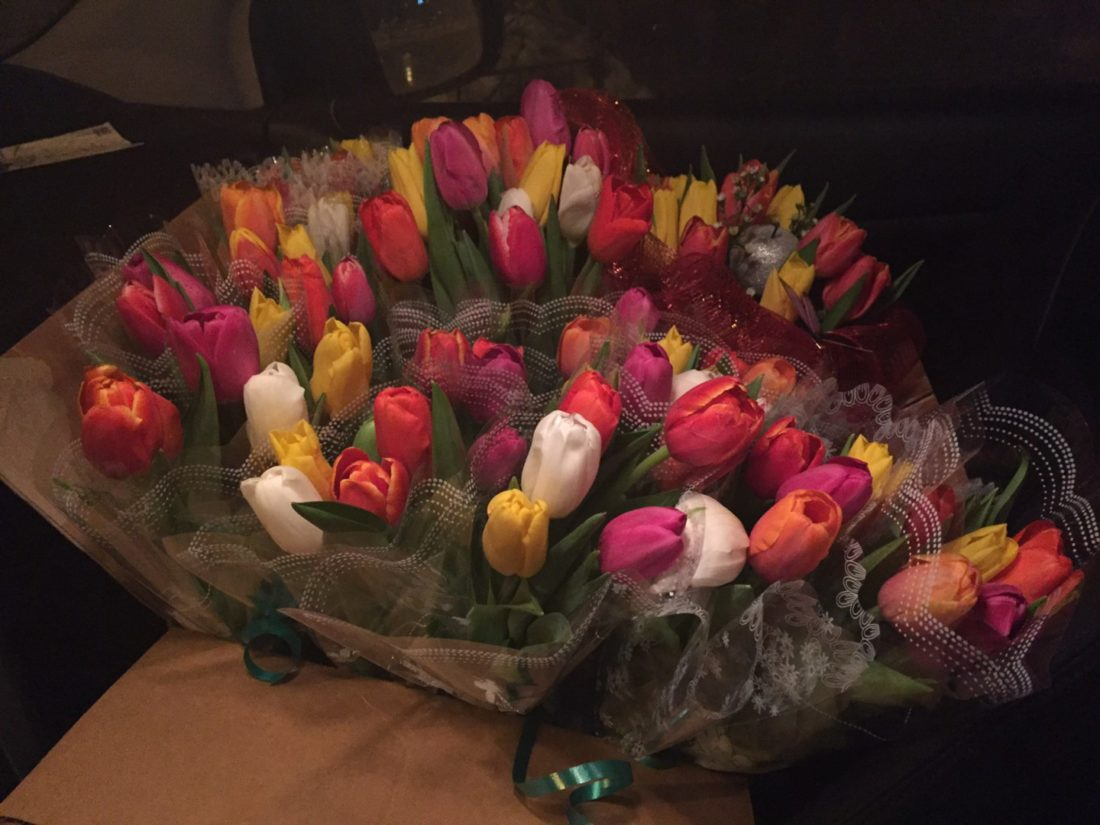 цветы для Айболит Плюс