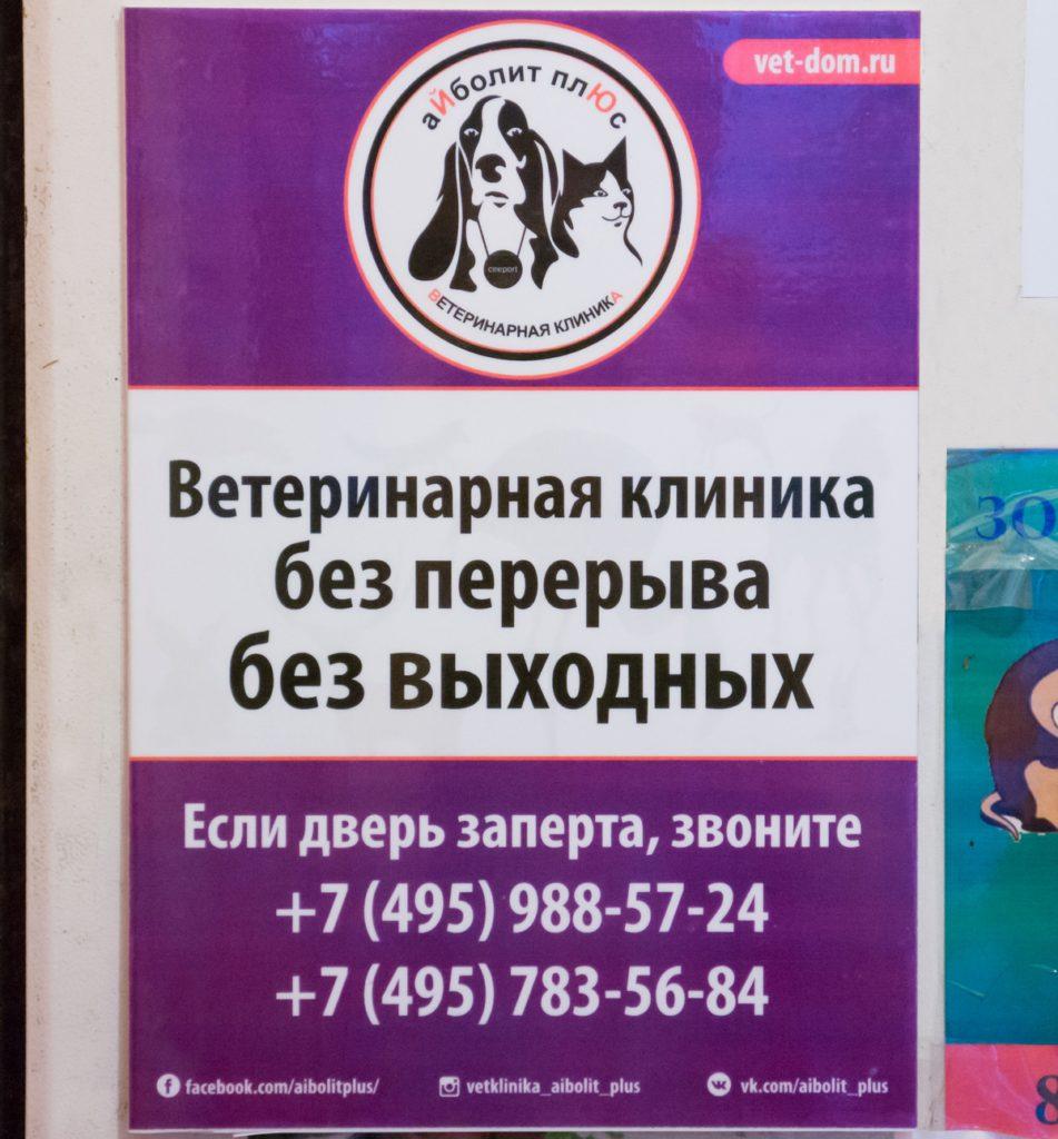 Табличка на двери ветклиники на Ульяновой, 19