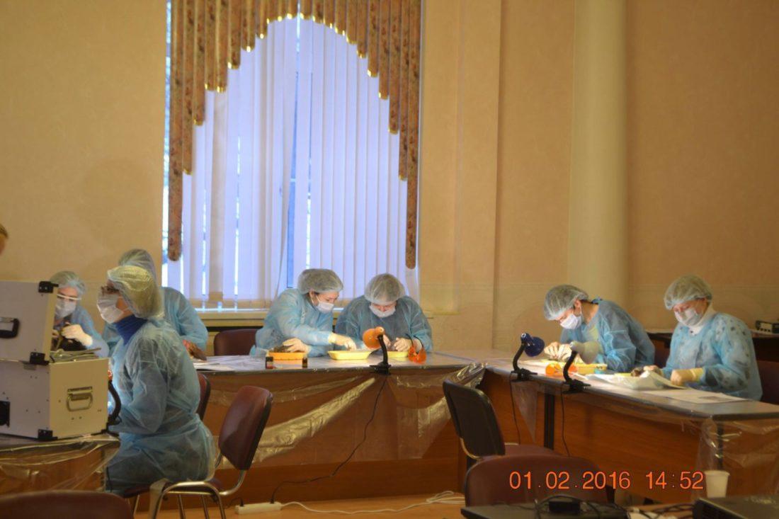 стоматологи работают