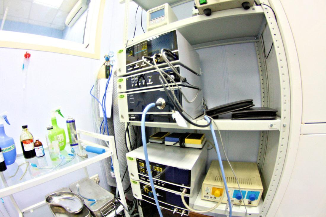 Гастроскопия для животных москва больничный лист как оплачивается после увольнения