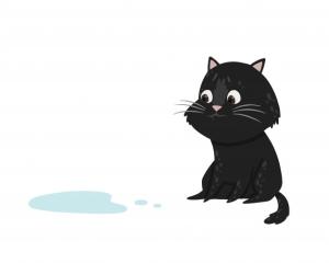 Урологический синдром у кошек